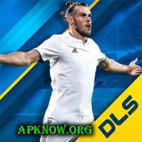 دريم ليج 2019 Dream League Soccer